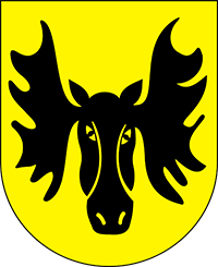 logo wasilkowa